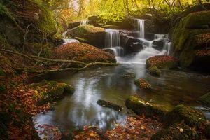 Бесплатные фото осень,река,водопал,деревья,камни,природа