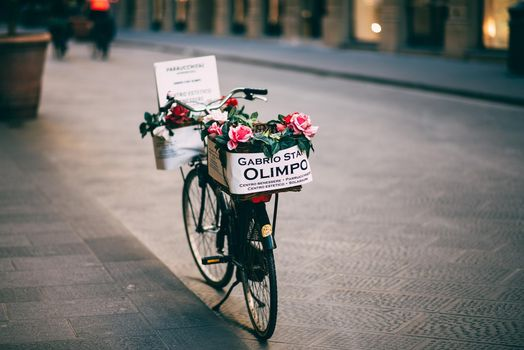 Фото бесплатно rozy, tsvety, velosiped