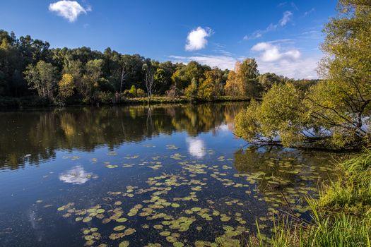 Photo free Russia, landscape, Krasnogorsk district