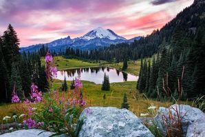 Бесплатные фото Tipsoo Lake,Mount Rainier National Park,закат,озеро,деревья,горы,камни