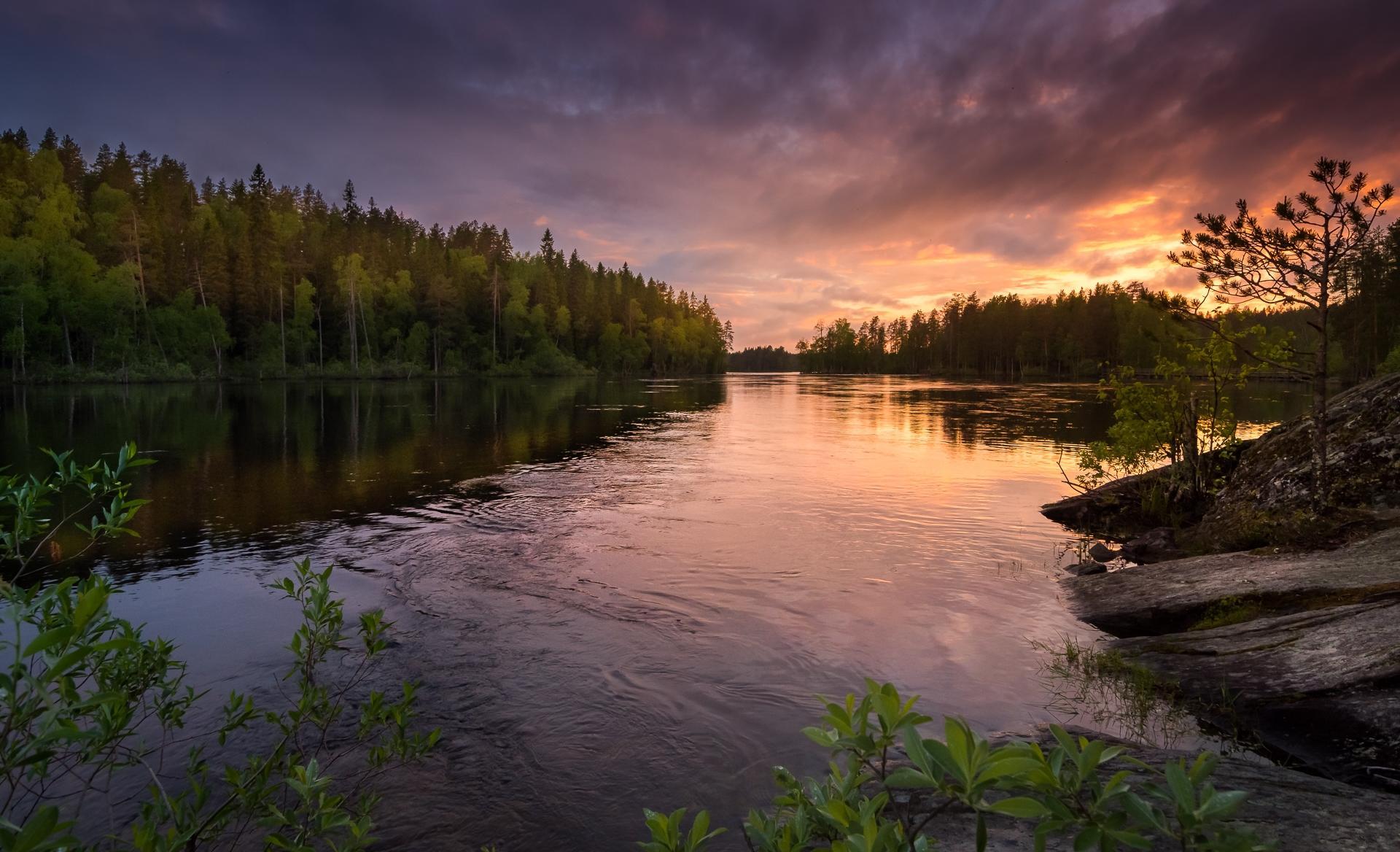 Обои закат, река, лес, деревья