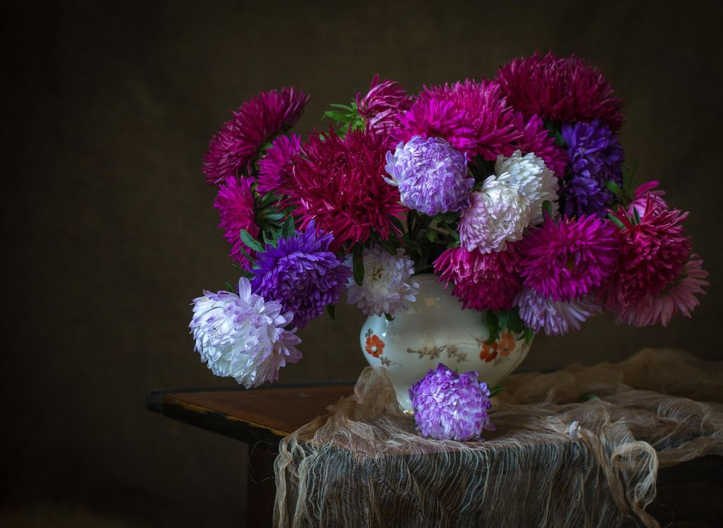 Free photo still life, table, vase, flowers, asters - to desktop