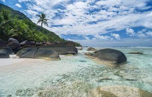 Фото бесплатно пальмы, камни, пейзаж