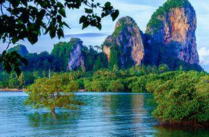 Фото бесплатно Таиланд, Краби, океан