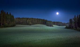 Фото бесплатно поле, луна, лес
