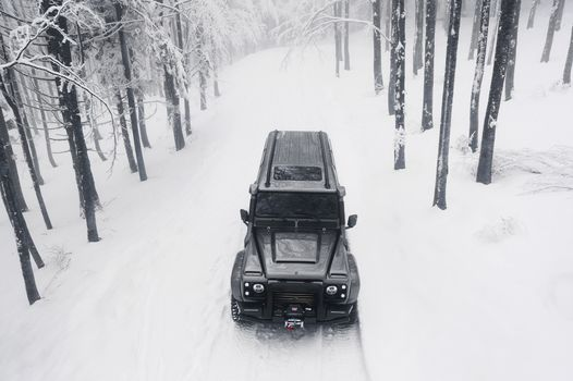 Photo free Land Rover, winter, forest