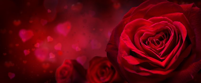 Photo free lovers day, valentine s day, red