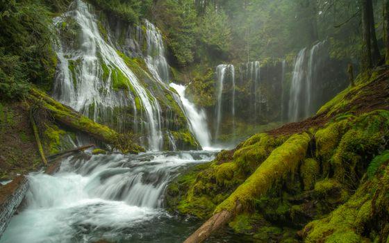 Photo free Panther Creek Falls, forest, Gifford Pinchot
