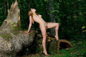 Красивая голая девушка в лесу