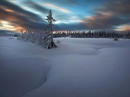 Заставки норвегия,пейзаж,снег,огни,облака,закат,деревья