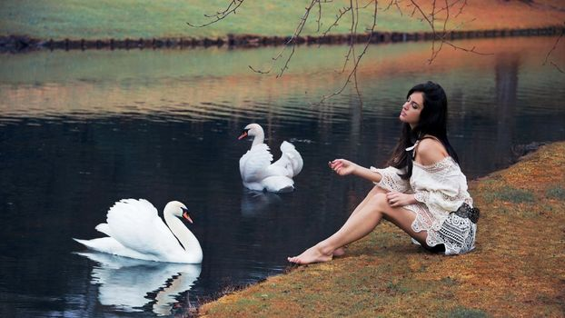 Photo free woman, white swans, pond