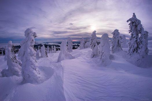 Заставки Rogojel, Romania, зима