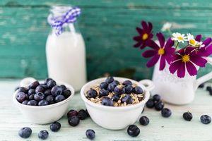 Photo free breakfast, milk, berries