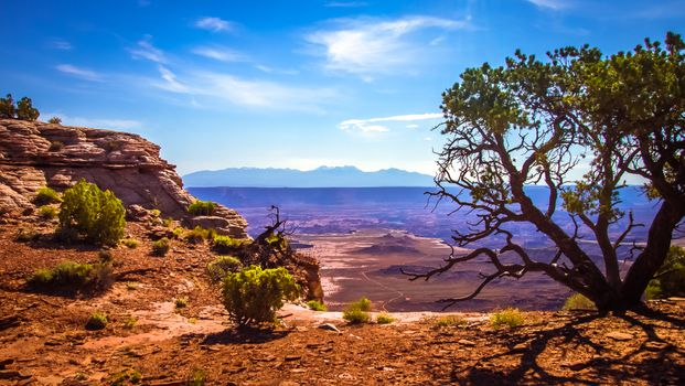 Photo free landscape, national, american