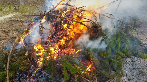 Огонь, костер