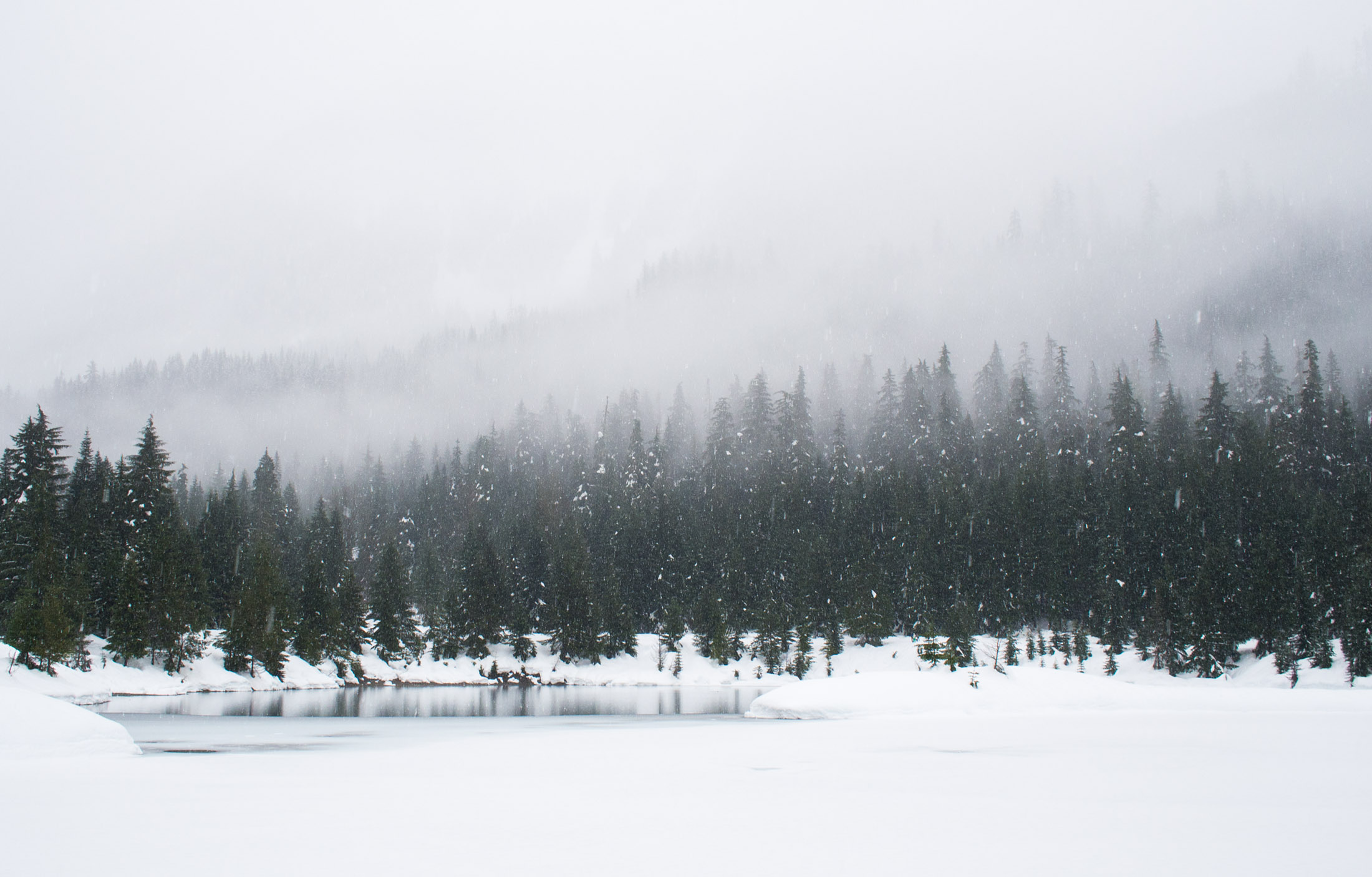 Free Photo Winter Snow Wallpaper To Desktop