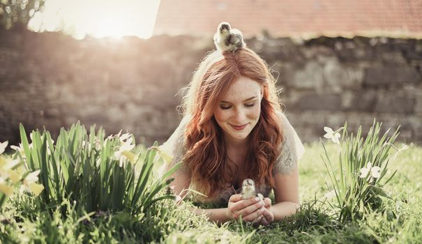 Girl with Chicks · free photo