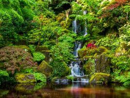 Бесплатные фото Портлендский Японский Сад, Портленд, Орегон, Portland Japanese Garden, водопад, парк, пейзаж