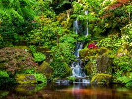 Заставки водопад, портлендский японский сад, парк