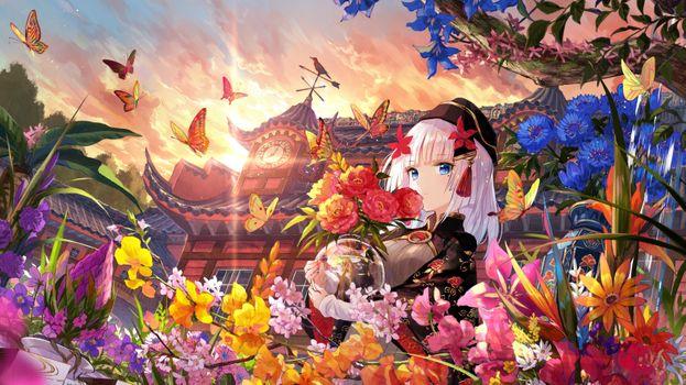 Photo free botanical garden, anime girl, butterflies