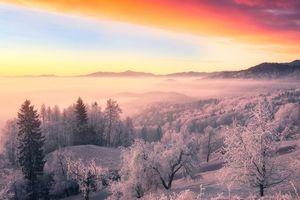 Фото бесплатно пейзаж, иней, закат