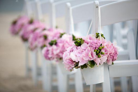 Фото бесплатно cape, cod, wedding