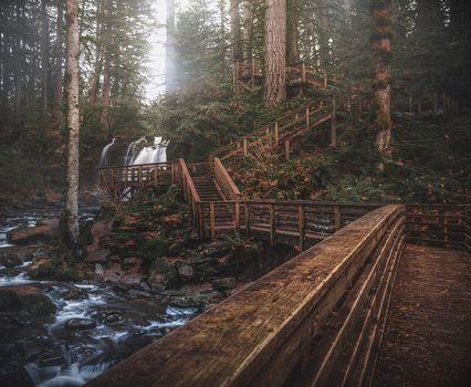 Фото бесплатно живописный, деревья, вода