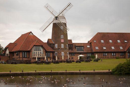 Photo free cities, duck, England