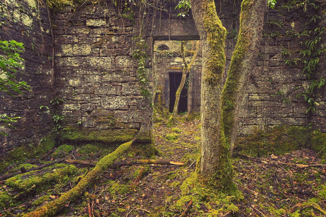 Photos for free abandoned castle, ruin, forgotten - to the desktop