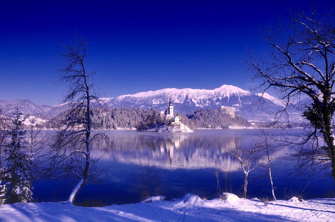 Фото бесплатно зима озеро Блед деревья - на рабочий стол