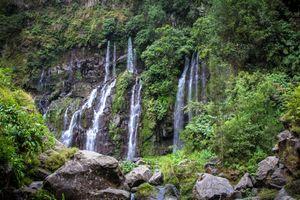 Бесплатные фото водопад,скалы,камни,деревья,природа