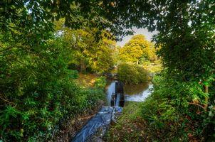 Бесплатные фото осень, парк, деревья, речка, ручей, колесо от мельницы, мост