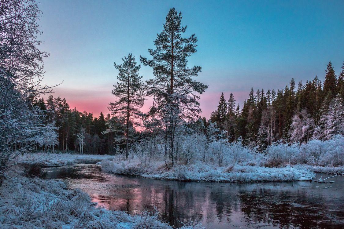 Фото бесплатно река, иней, деревья - на рабочий стол