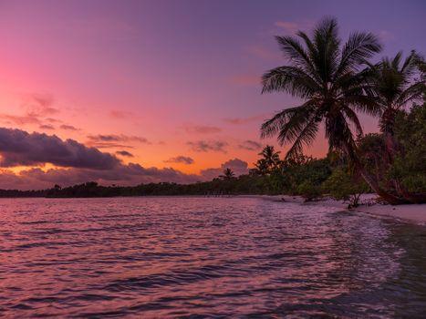 Заставки пальмы, волны, природа