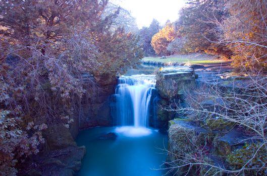 водопад, Jesmond Dene Park, Ньюкасл-апон-Тайн, Англия, кусты