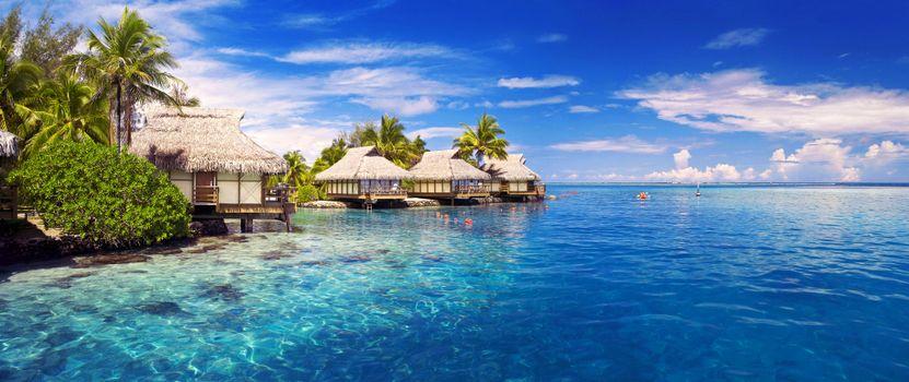 Бесплатные фото тропики,море,бунгало