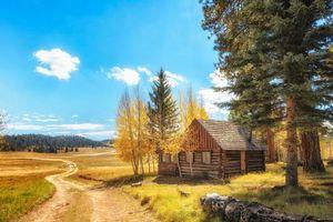 Бесплатные фото Kaibob National Forest,Grand Canyon North Rim,Национальный парк,поле,дорога,домик,деревья