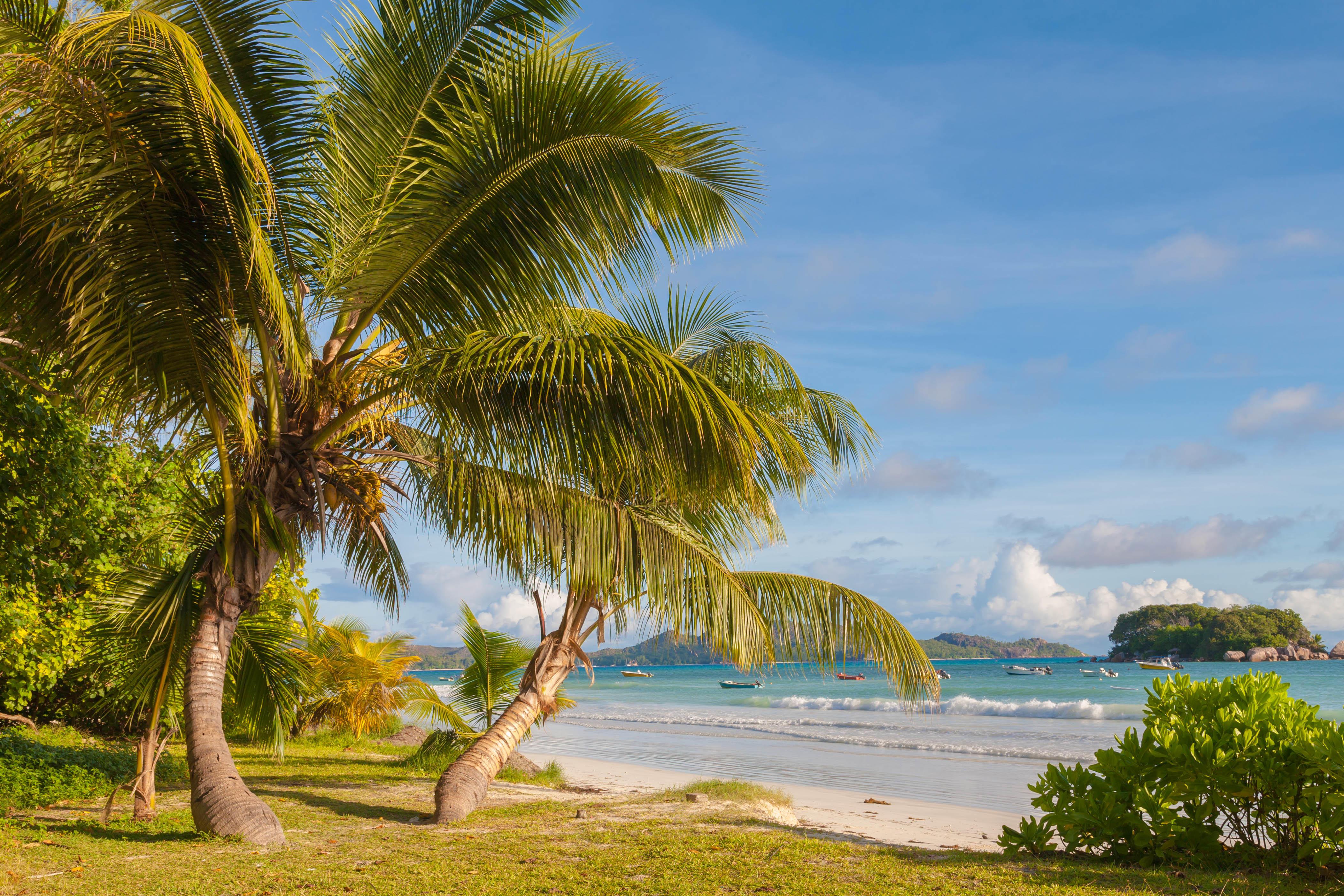 Обои Пляж Анс-Вольберт, Праслин, Сейшельские острова, море