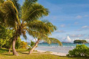 Фото бесплатно Пляж Анс-Вольберт, Праслин, Сейшельские острова