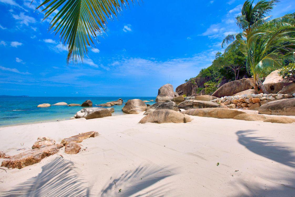 фото сейшелы пляж это чистый