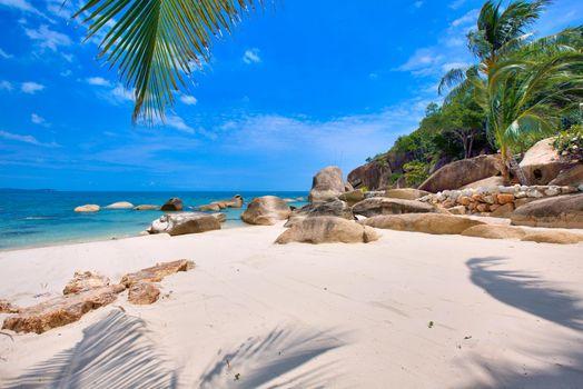 Screensaver tropical, seychelles on computer