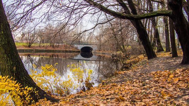 Бесплатные фото Ekateringofka river,Saint-Petersburg