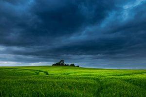 Бесплатные фото поле,тучи,трава,деревья,пейзаж
