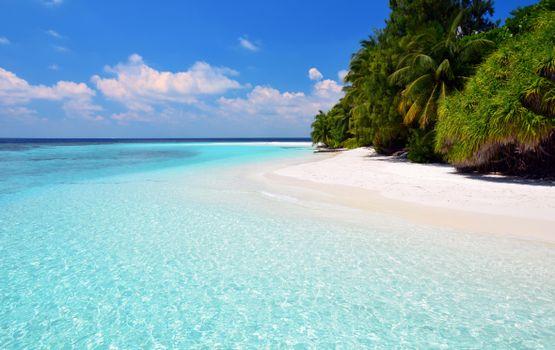 Бесплатные фото Мальдивы,тропики,море,остров,пляж