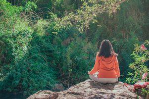 Фото бесплатно фитоценоз, любовь, сад