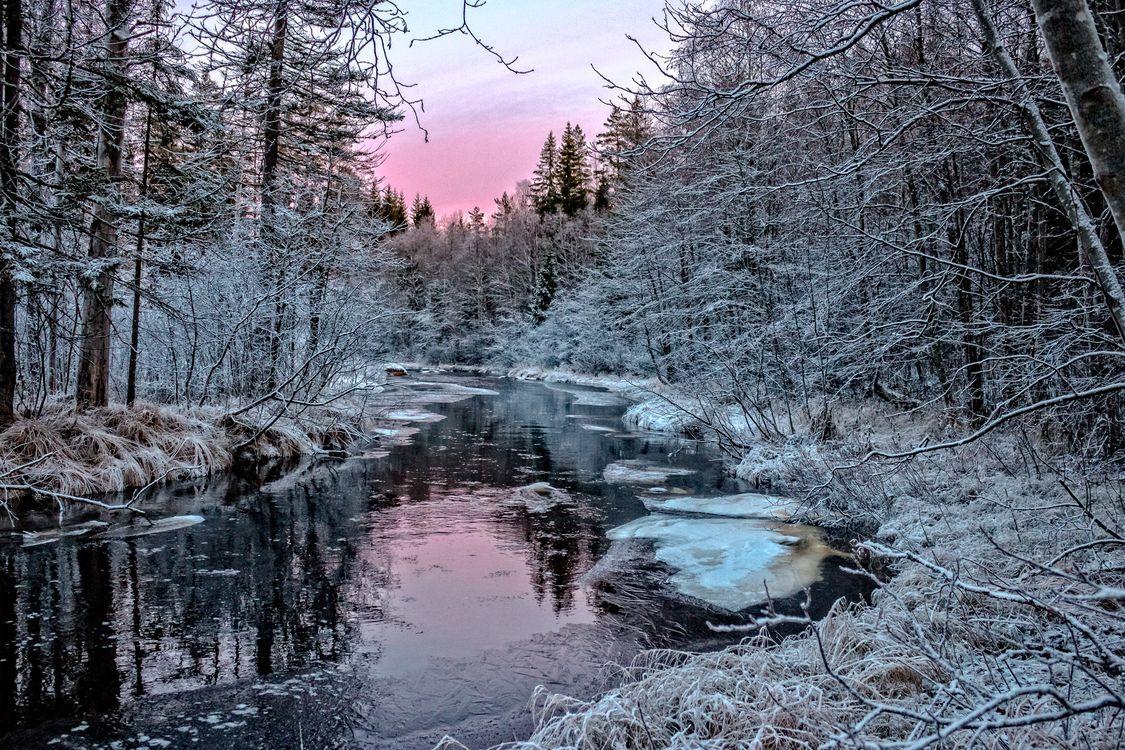 Фото бесплатно река, иней, закат - на рабочий стол