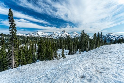 Фото бесплатно горы, зима, гора Ренье Национальный парк