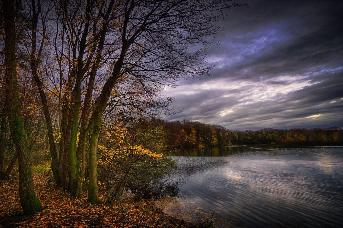 Осень и озеро · бесплатное фото