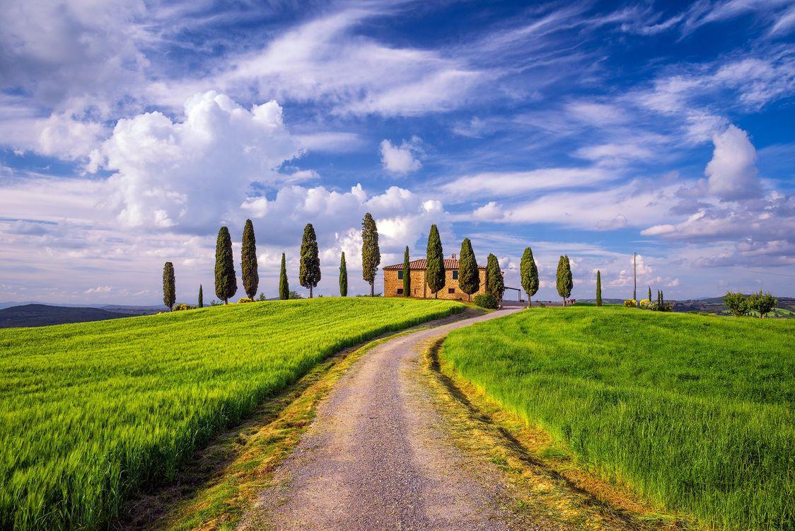Фото бесплатно холмы, Italy, дорога - на рабочий стол