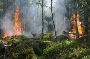 Фото бесплатно геологическое явление, Швеция, жжение